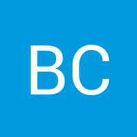 Basic user avatar generated automatically20170724 2902 1shi6x6