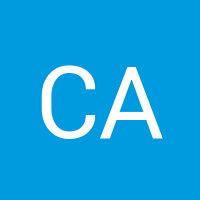 Basic user avatar generated automatically20171117 22780 91fli1