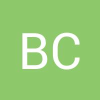 Basic user avatar generated automatically20170411 1487 mbcrdi