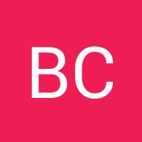 Basic user avatar generated automatically20170411 1487 p4vb17